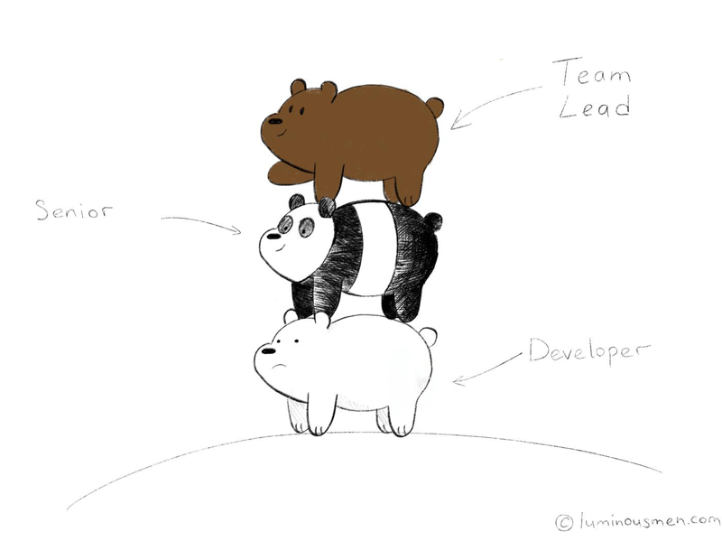 Who is a team lead?